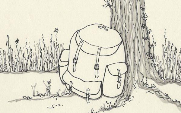rucksack by tree